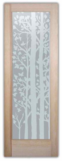 Interior Door Sans Soucie Art Glass