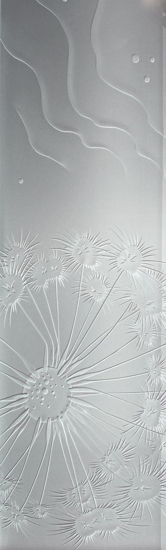 Fan Coral Ripples