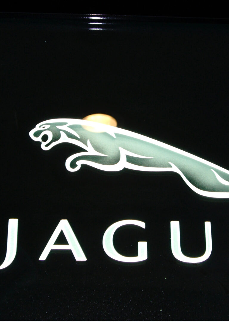 Jaguar (similar look)