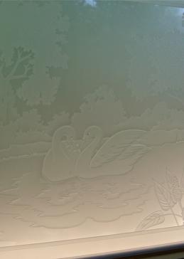 Wading Swans