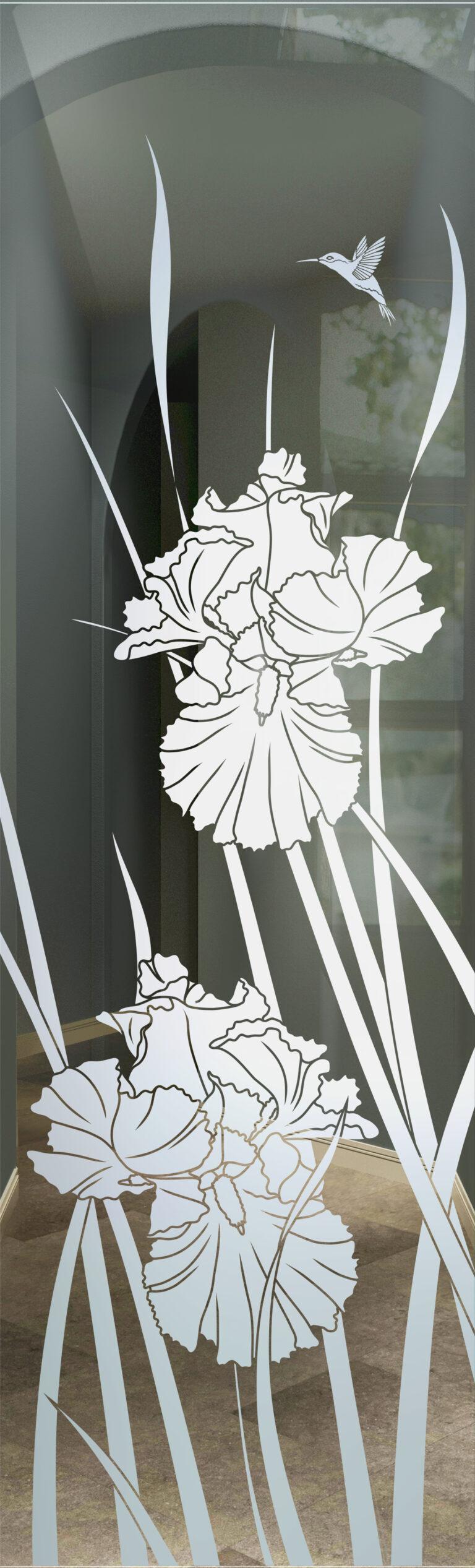 Iris Hummingbird II