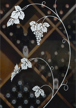 Vineyard Grapes Unfurled